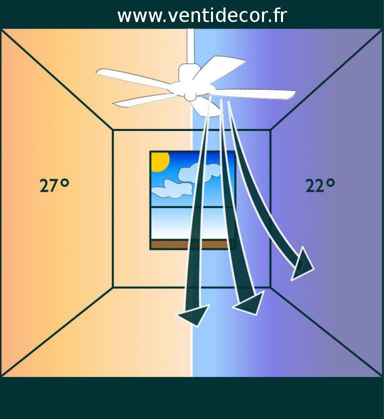 Ventilateurs de plafond fonction d'hiver et d'été